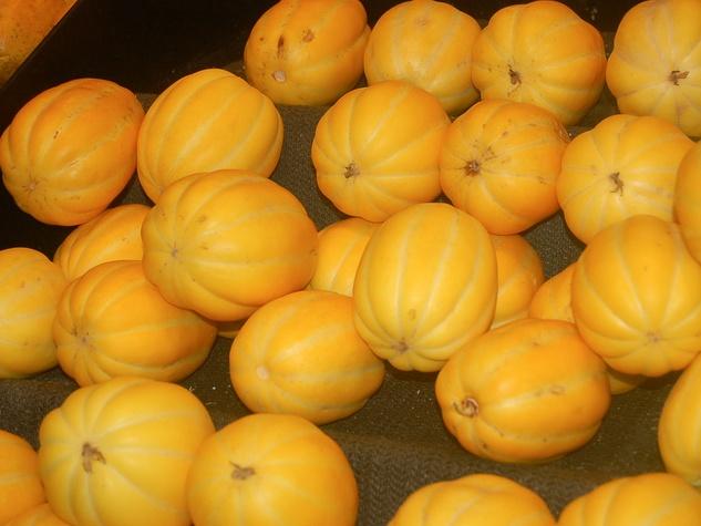 News_Joel Luks_vegging out_99 Ranch Market_Korean Melon