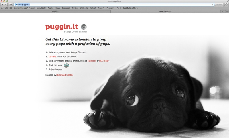 Puggin.it Pug Chrome plug in Rock Candy