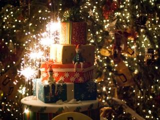 Austin Photo Set: News_Jon Shapley_driskill Christmas tree_Dec 2011_6