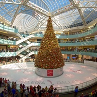 Galleria Dallas presents Grand Tree Lighting Celebrations