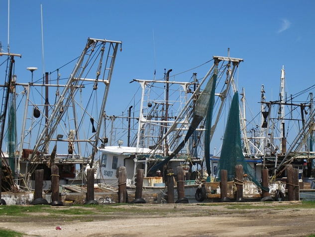 16. Katie Oxford Galveston oil spill March 2014 At Milt's Dock House - Shrimp boats were parked too