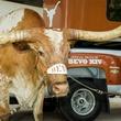 Chevy Silverado Bevo Offical Truck of UT