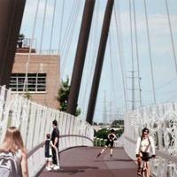 Mockingbird walkway