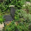 3. Katie Oxford Willem Kegge garden August 2014 Willem Kegge