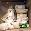 Cocaine stuffed tamales