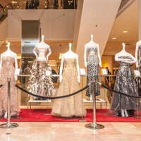 Diane Lokey Farb salute, October 2012, gowns, dresses