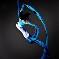 Second annual festival of aerial arts at VauLt Houston