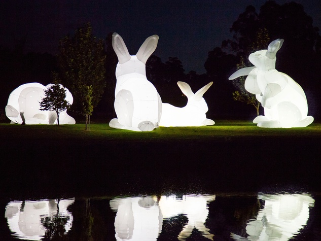 Bunnies Intrude art installation 1600 Smith