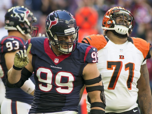 7 Texans vs. Bengals first half November 2014 J.J. Watt