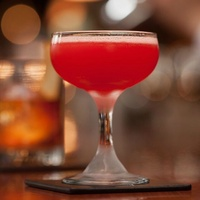 SACC Cocktail