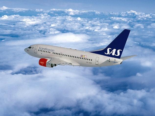 Scandinavian Airlines jet in sky