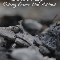 Austin Photo_Events_Rising from the Ashes_Poster