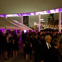 Long Center_Purple Party 7_terrace_crowd_2015