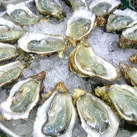 Oysters on the Half Shell at The West End