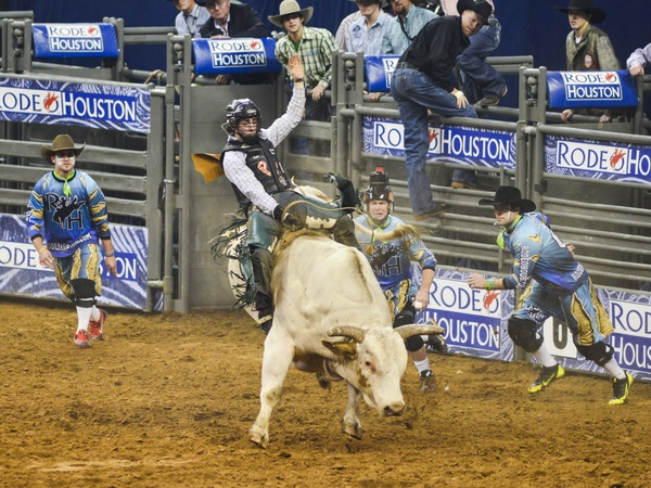 Houston Rodeo — Latest News, Images and Photos — CrypticImages