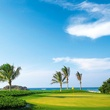 Four Seasons Resort Punta Mita golf embed crop