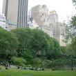 News_Central Park
