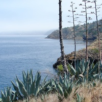 Stephan Lorenz Channel Islands January 2014 Santa Cruz Island coastline