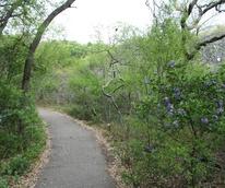 San Antonio hiking hike bike trail park outdoors 2015