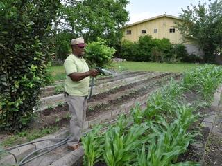 News_Joel Luks_Farmer Street Community Garden_Fifth Ward_neighborhood garden