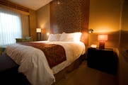 Austin_Photo: Places_Hotel_Casulo Hotel_room