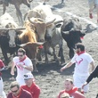 Great Bull Run 07