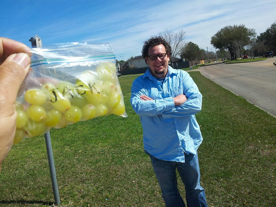 16, The Art Guys, longest street, Oilpan L L C brought some grapes