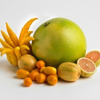 Central Market presents Citrus Fest: Out of This World Citrus Makes a Meal