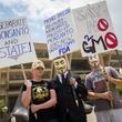 Photo of anti-GMO protesters in the Dallas march Agiainst Monsanto