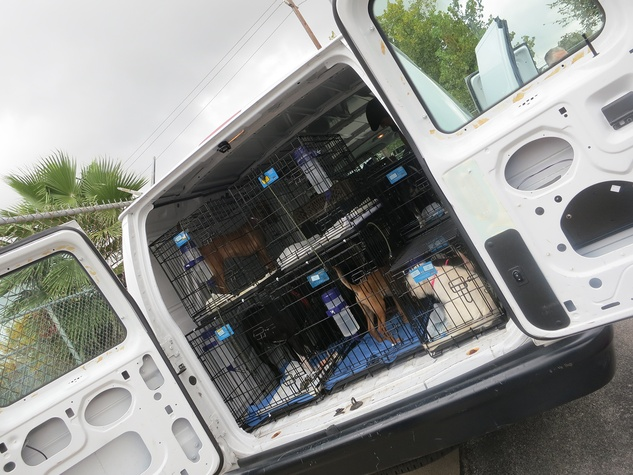 BARC Rescued Pets Movement November 2013 RPM Van loading up for Colorado