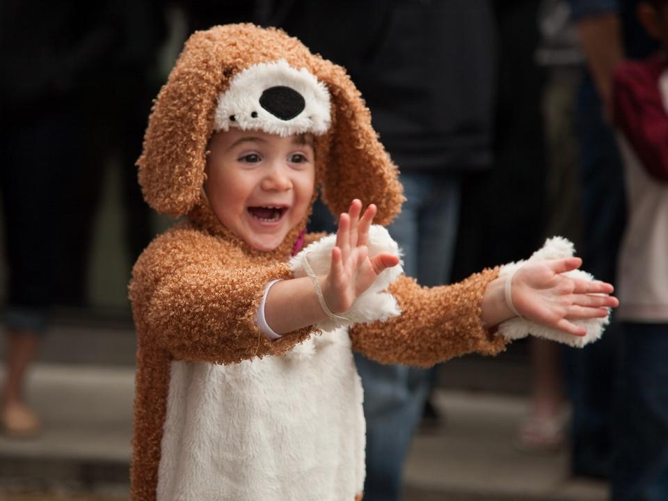 Jo's 16th Annual Pet Parade in Austin Little Girl Dog Costume McKenzie
