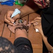 Henna tattoos at Yellow Rose Gala 2017