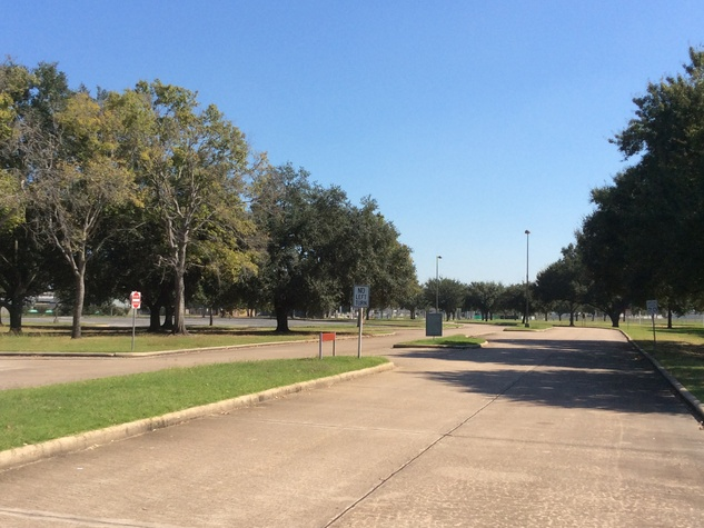 Mighty oaks line the roads at the old Texas Instruments campus on the Southwest Freeway at Kirkwood. October 2014