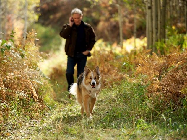 News_Joe Leydon_Kevin Kline_May 2012_Kline_Walking Dog