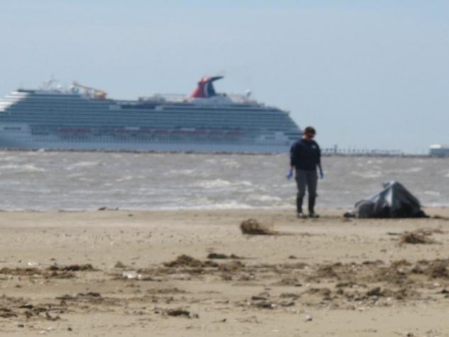 13. Katie Oxford Galveston oil spill March 2014 Dead dolphin. Carnival Magic leaving Galveston Bay
