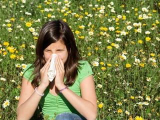 Austin Photo Set: News_Kerri_Austin allergies_march 2012_tissue