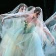 News_Houston Ballet_Giselle_artists