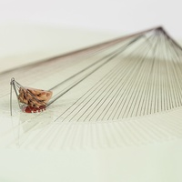 Houston Center for Contemporary Craft presents In Residence