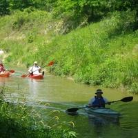 Bayou Preservation Association's Cypress Creek Regatta