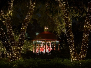Holiday at the Arboretum