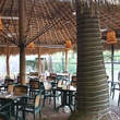 Maria Selma Restaurant Houston thatched-roof patio