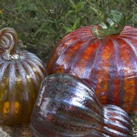 Wimberley Glassworks presents Annual Smorgasgourd of Glass Pumpkins and Gourds