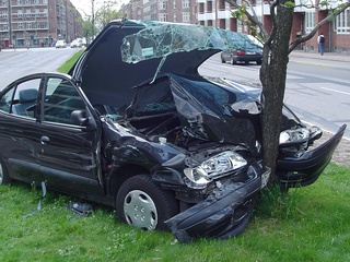News_car_crash_tree