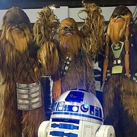 San Antonio Wookie Walk