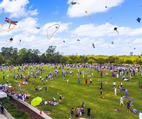 Weekend events kites flying Hermann Park