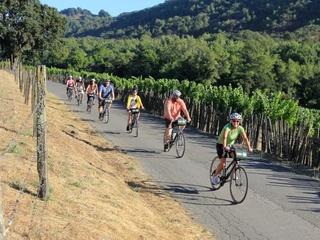 Napa Valley Bike Tour