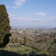 3 San Gimignano