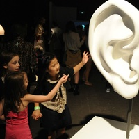 The Health Museum presents <i>Biorhythm: Music and the Body</i>