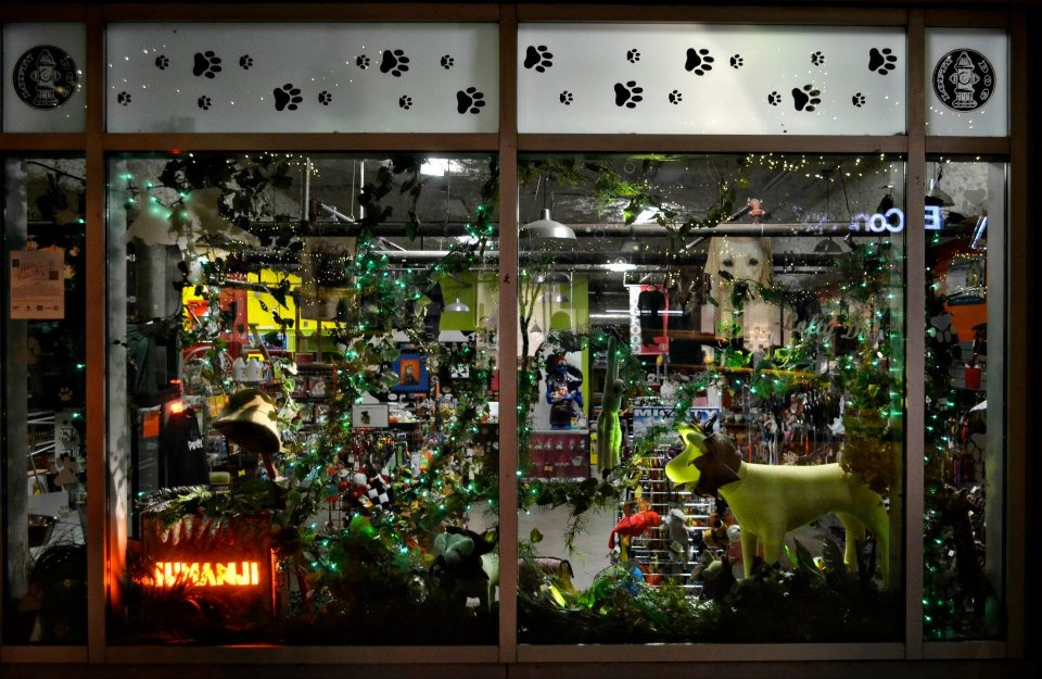 Austin Photo_News_2nd Street Windows