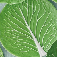 1 Tory Burch lettuce and cabbage collection March 2015